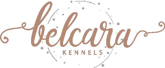 Belcara Kennels